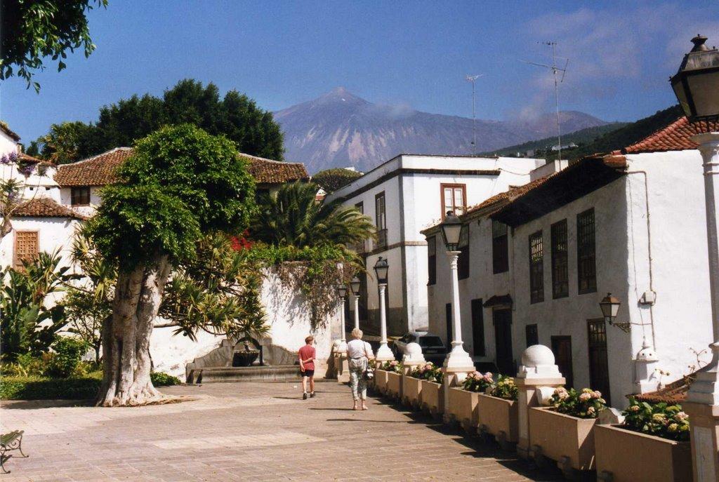 Tenerife: Icod de los Vinos